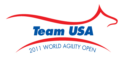 WAO Team USA Logo Final